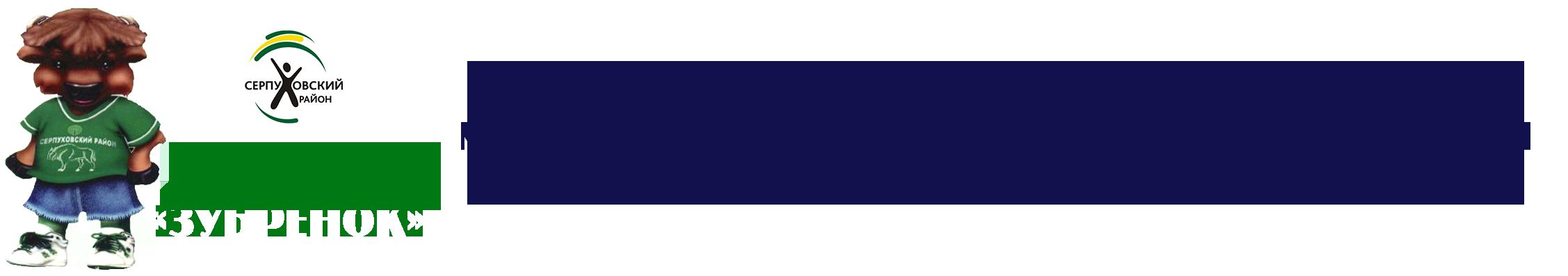 МБУ СШ «Зубрёнок»